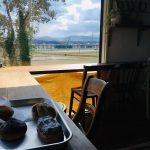 小松市・人気のパン屋「ヨシタベーカリー」緑を望むおしゃれなカフェスペース(石川県)この日は晴れで爽快でした。
