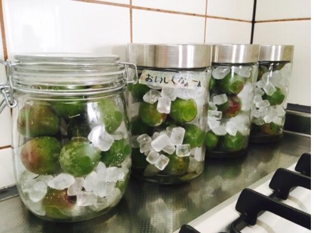 梅 ジュース の 作り方 簡単